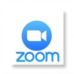 Theorieonline via ZOOM